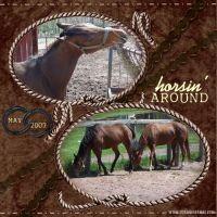 horsin_around.jpg