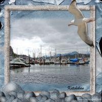 Alaska14-000-Page-1_600_x_600_.jpg