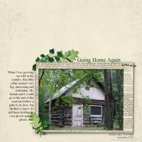 Wallpaper-000-Cabin-Near-Cottage.jpg