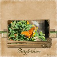 My-Scrapbook-000-Butterfly.jpg