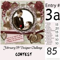 Feb09Challenge_Contest_Entry_Form_Entrant_3a.jpg