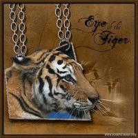Tiger-OOBRS.jpg