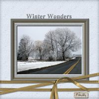 February-2009-_3-001-Winter-Wonders.jpg