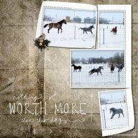 February-2009-_3-003-Frolicking-Horses.jpg