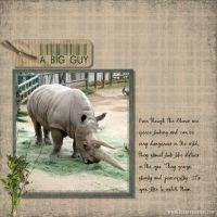 The-Zoo-3_2009-003-Rhino.jpg