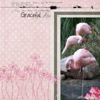 Zoo-2009-Finish_-000-Flamingo.jpg