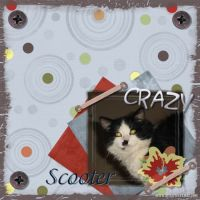 Crazy-Kittys-005-Page-6.jpg