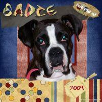 Sadie-000-Page-1.jpg