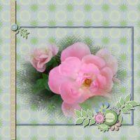 2012-Groove-challenge-011--Joyous-Spring-1.jpg