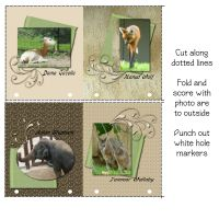 Picture-Formats-007-Page-5.jpg