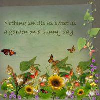 garden_sweet_smell.jpg