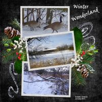 Summer-2010-004-Winter-Wonderland.jpg