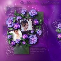 Moonbeams_kits_-_MB_Purple_rosebud_kit.jpg