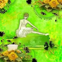 Moonbeams_kits_-_MB_Verde_Lime.jpg
