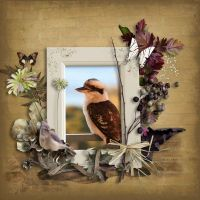 kookaburra-000-Page-1-1000.jpg