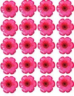 lolipop-flowers-000-Page-1-1000.jpg