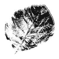 SBM-Sept_-2014-Groove-Challenge-000-Leaf-Shape-1_DDBD.jpg