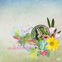 Fly-Little-Butterfly-Collab_DDR-March-2016-CT-000-Fly-Little-Butterfly_1.jpg
