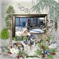 1616_winter.jpg