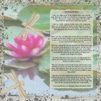 7-19-dragonfly-beetle-000-Page-1.jpg
