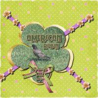 AmericanRobin_1.jpg