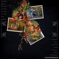 Autumn_Leisure_Clusters_02.jpg