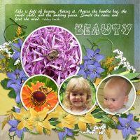 Beauty_08_11.jpg