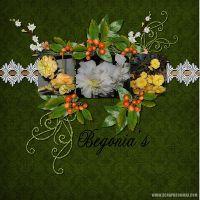 Begonia_s.jpg