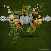 Begonia_s1.jpg