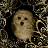 Bella-2007-000-Page-3.jpg