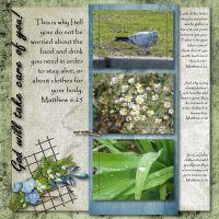 Bible-Verses-012-Matthew-6-25.jpg