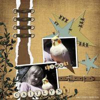 Bird-Love.jpg