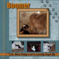 Boomer_-_tough_life-screenshot1.jpg