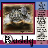Brandon_s-turtle-000-Page-1.jpg