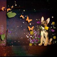 ButterflyDream_kit_9.jpg
