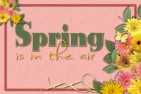 Cards-005-Spring1.jpg