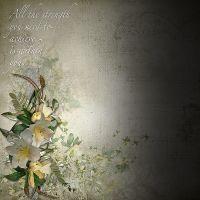 Carena-Garden-Blooms-LO1.jpg