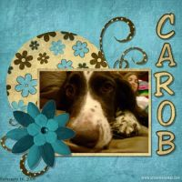 Carob_Face.jpg