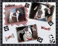 Cassie-000-Page-1.jpg