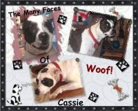 Cassie-001-Page-2.jpg