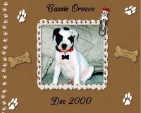 Cassie_s-Album-000-Page-1.jpg