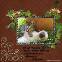 Cats-Mans-Friend.jpg