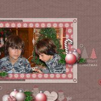 ChristmasCranberries_QP21.jpg