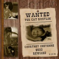 Courtney-004-Cat-Rustler.jpg