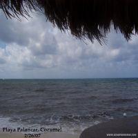 Cruise-008-Palancar-Cozumel.jpg