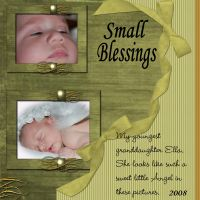 DGO-Small-Blessings-000-Page-1.jpg