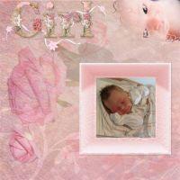 DGO_Pastel_Pink-001-Page-2.jpg