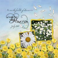 Daisy-Love.jpg