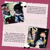Diana-Carmichael_CT-Team-layouts-003-Page-3.jpg