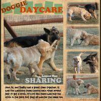 Doggie-daycare-3_4_07-000-Page-1.jpg